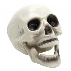 CRANEO CALAVERA CON MANDIBULA MOVIL HALLOWEEN
