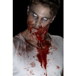 Sangre falsa roja 455 ml para piel