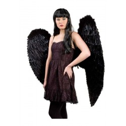 Alas negras angel caido gigantes 120 x 120 cm
