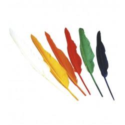 Plumas de indio 12 unidades colores surtidos